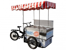 Ie Cream Cart on Tricycle - Cargo Bike System  Tricycles